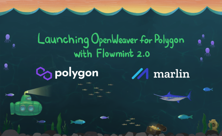 Launching OpenWeaver for Polygon with FlowMint 2.0